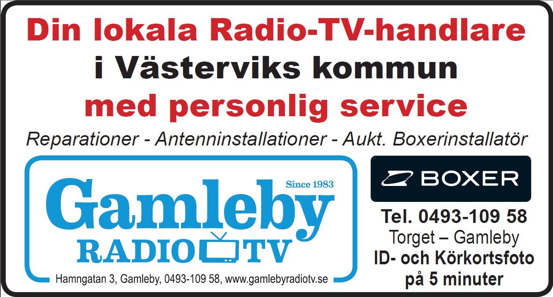 Gby RoTV skärmdump av pdf-1